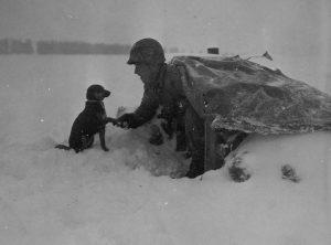 Američki vojnik i pas.