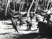 Japansko iskrcavanje na otok Netun