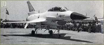 Prototip aviona Levi