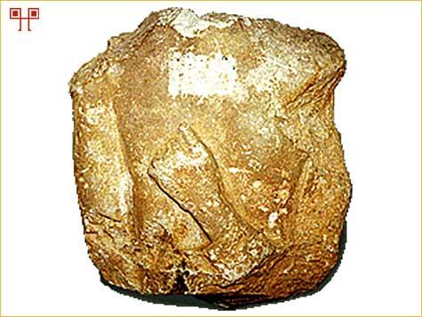 Ulomak kamene sklulpture iz Nezakcija s prikazom ruke položene na prsa