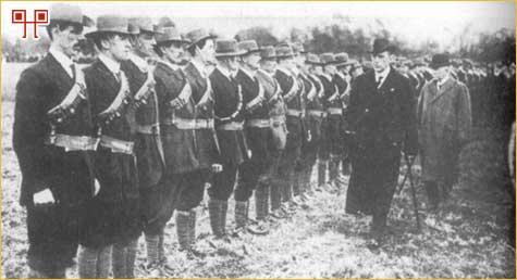 Ulsterski dobrovoljci
