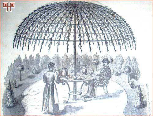 Sa željenom rezidbom voćaka mogli su se postići razni oblici krošnje