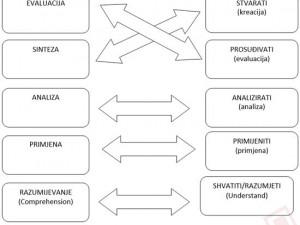 dimenzije-kognitivnih-procesa