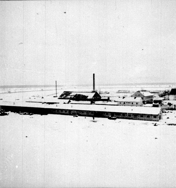 Logor III Ciglana, Jasenovac, zima 1942.
