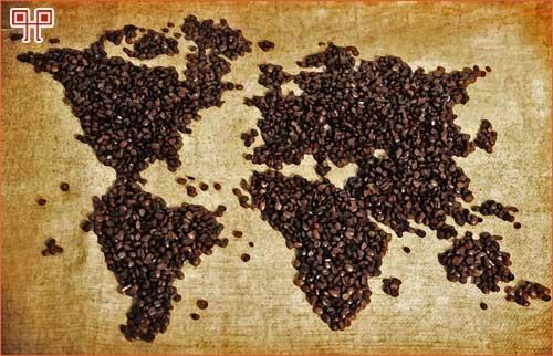 kava-svijet