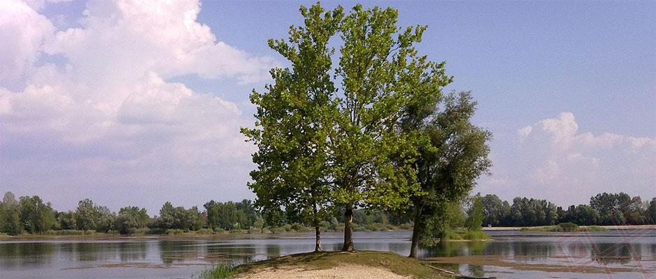 """Znanstveni skup """"Jezero Šoderica u prošlosti, sadašnjosti i budućnosti"""""""