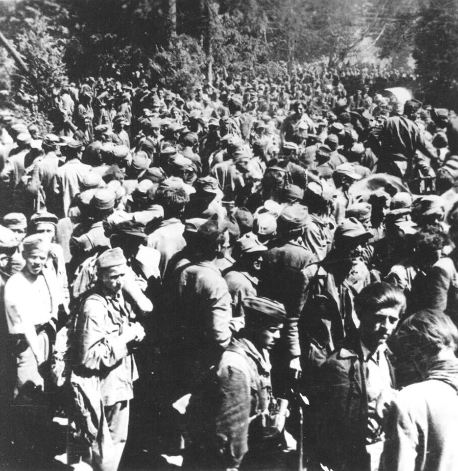 Zarobljena banda kod Pliberka